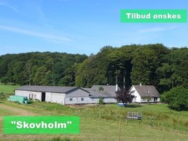 Skovholmvej 1, 4700 Næstved